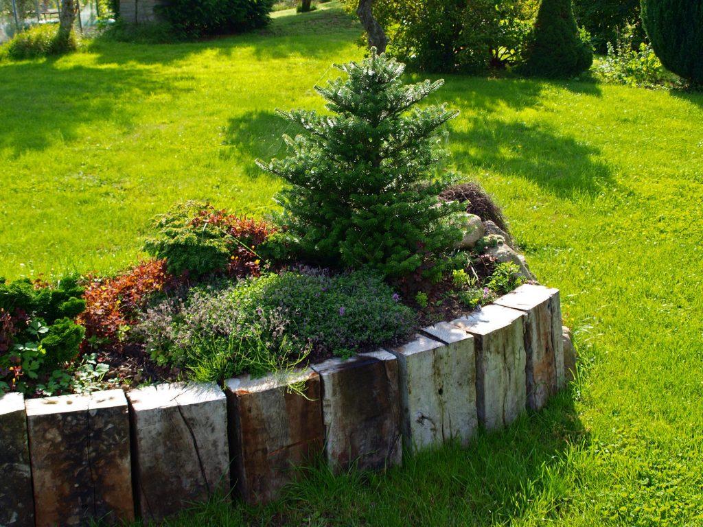 Cedar Park Landscaping Pros - Landscaping 2