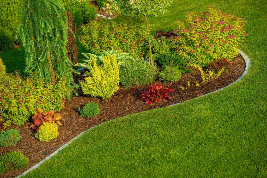 Cedar Park Landscaping Pros - Outdoor Lighting 1