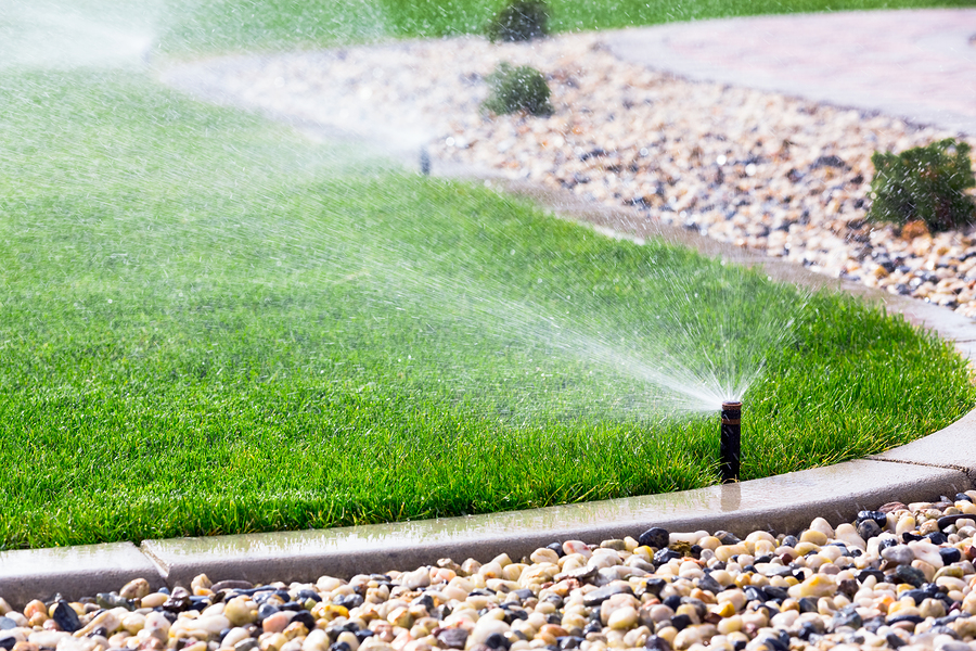 Set of automatic sprinklers watering fresh grass